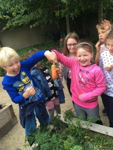 Harvest Time in 2nd Class