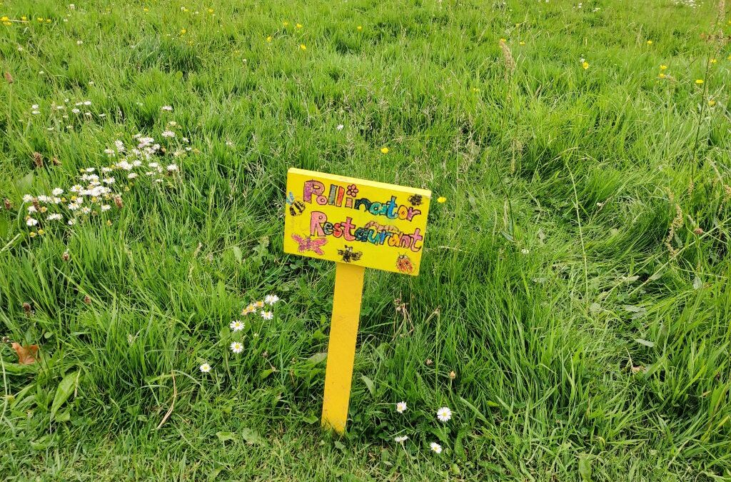 Grassland Survey